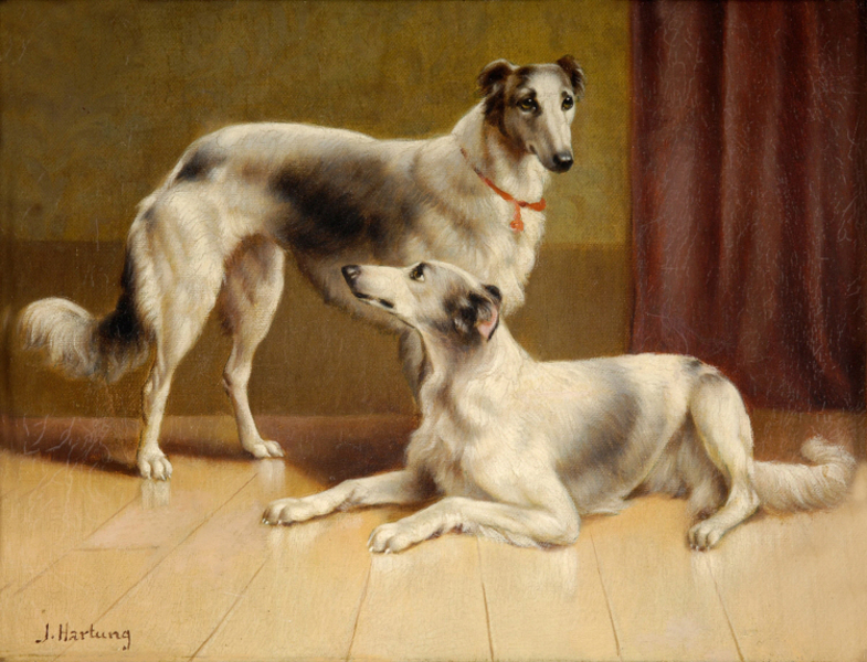 Carl Reichert - Persian Greyhounds