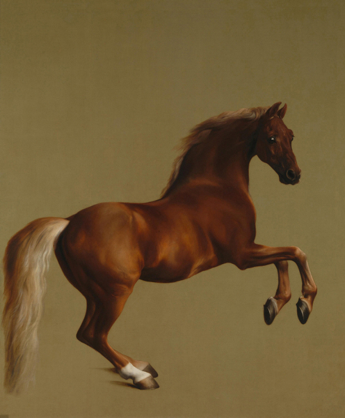 George Stubbs edit - Whistlejacket