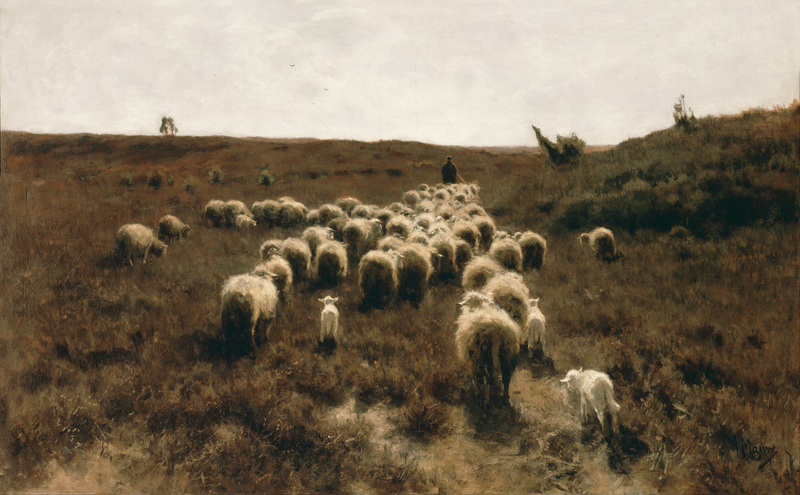Anton Mauve - The Return of the Flock