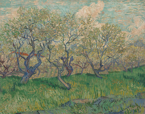 Vincent van Gogh - Orchard in Blossom 73.2 cm x 93.1 cm