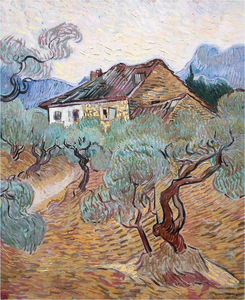 Vincent Van Gogh - The white cottage among olive trees