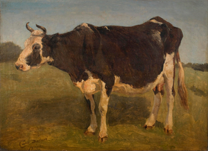 Carlo Dalgas - Black and white cow standing-2