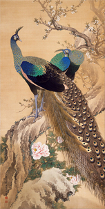 Imao Keinen - A Pair of Peacocks in Spring